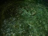 greencurry6