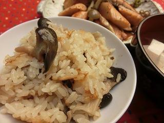 レシピ ヒラタケ