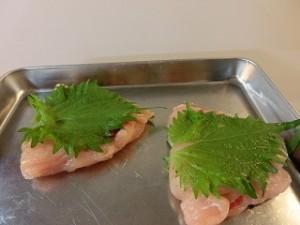 NHKきょうの料理ビギナーズの鶏ささ身の梅肉はさみ焼き