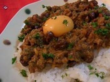 drycurry-nhkasa
